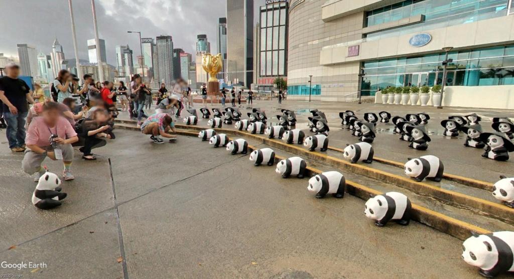"""Hong Kong à l'heure de la """"normalisation"""" : un voyage en images Panda10"""