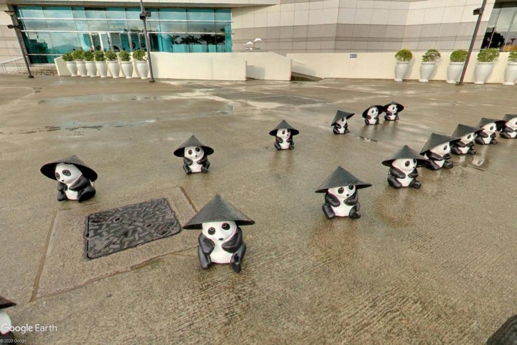 """Hong Kong à l'heure de la """"normalisation"""" : un voyage en images Panda210"""