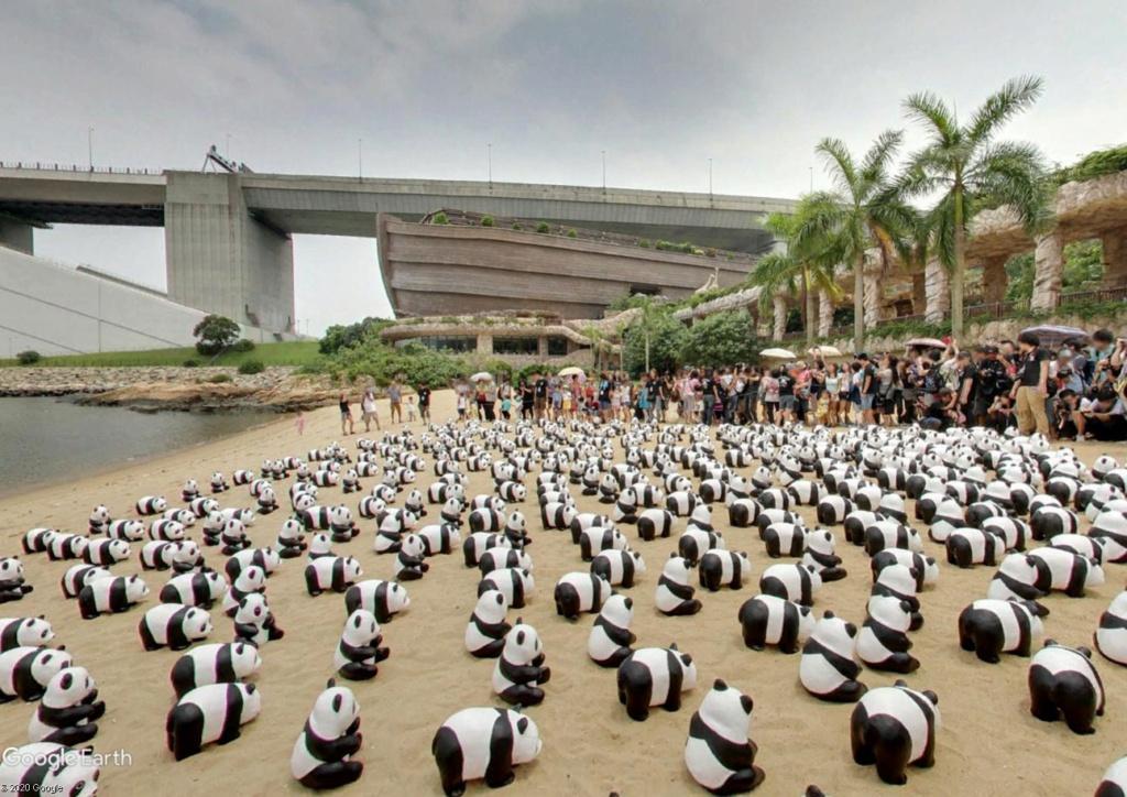 """Hong Kong à l'heure de la """"normalisation"""" : un voyage en images - Page 5 Panda_14"""