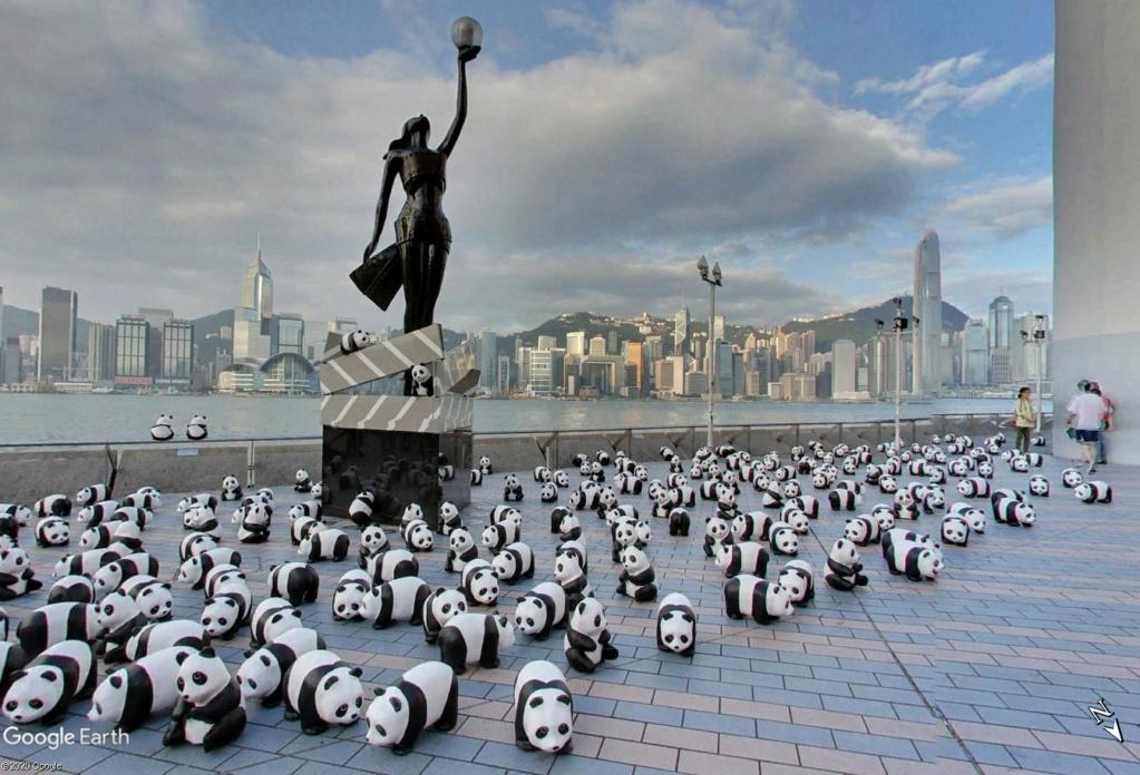 """Hong Kong à l'heure de la """"normalisation"""" : un voyage en images - Page 6 Panda_15"""