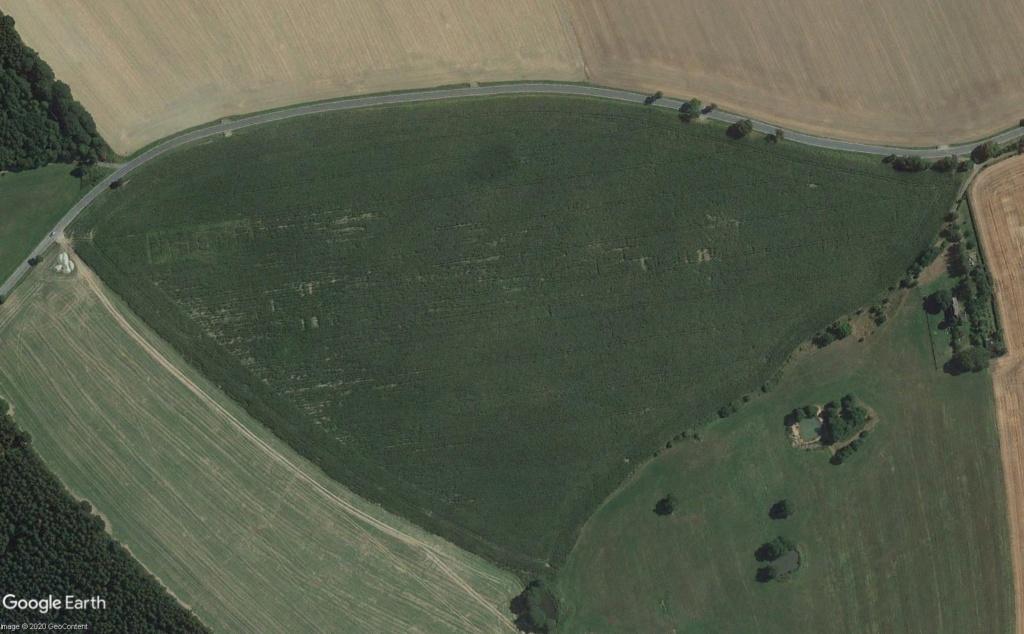 Travaux agricoles Thurin13