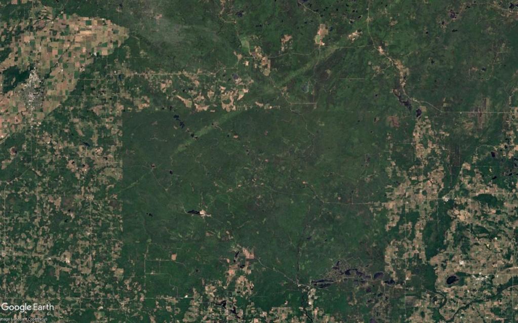Une intrigante forêt dans le Wisconsin (Réserve indienne Menominee) Wisc_210