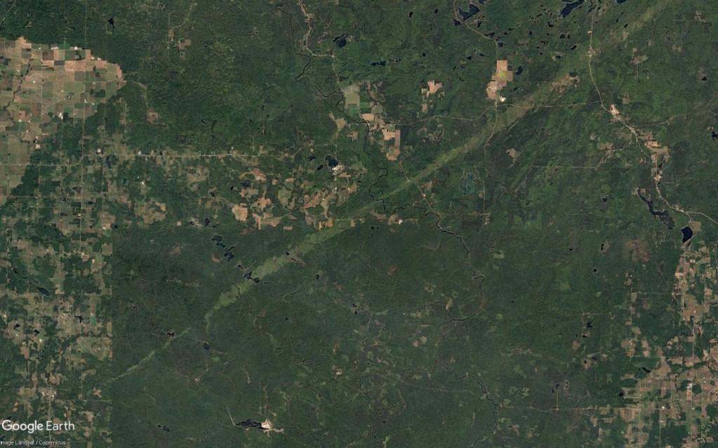 Une intrigante forêt dans le Wisconsin (Réserve indienne Menominee) Wisc_d10