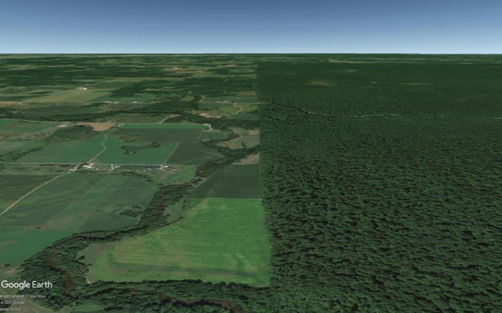 Une intrigante forêt dans le Wisconsin (Réserve indienne Menominee) Wisc_l10