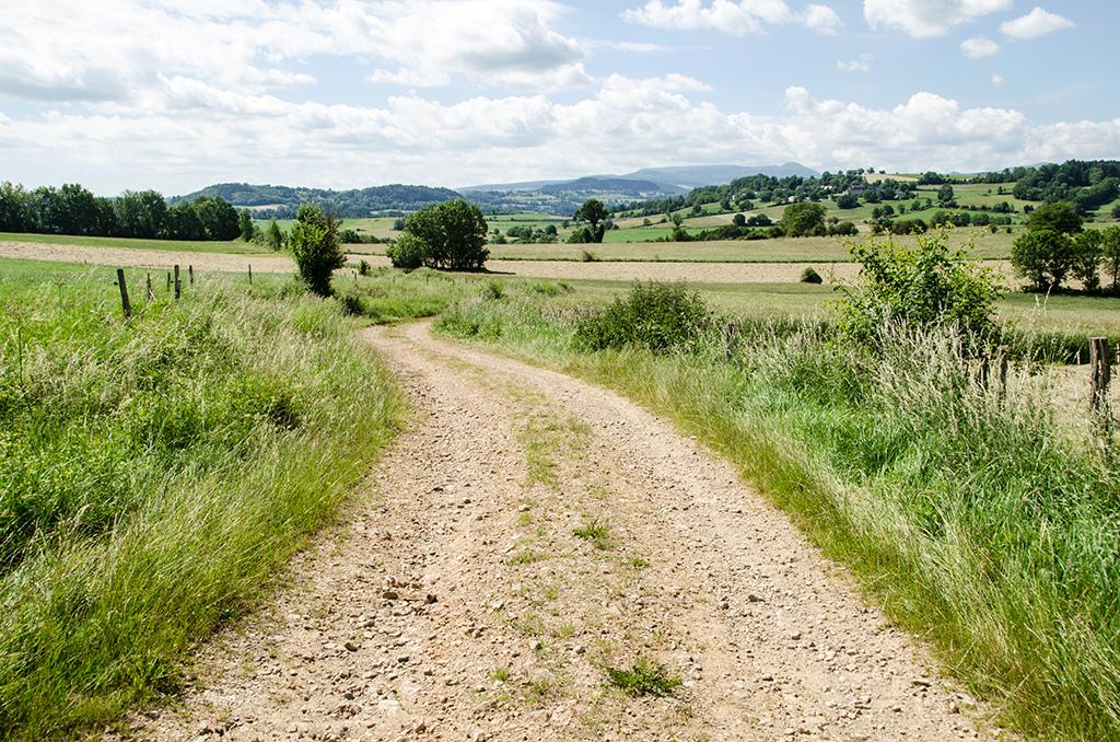 Sur un chemin de rando _dsc1211