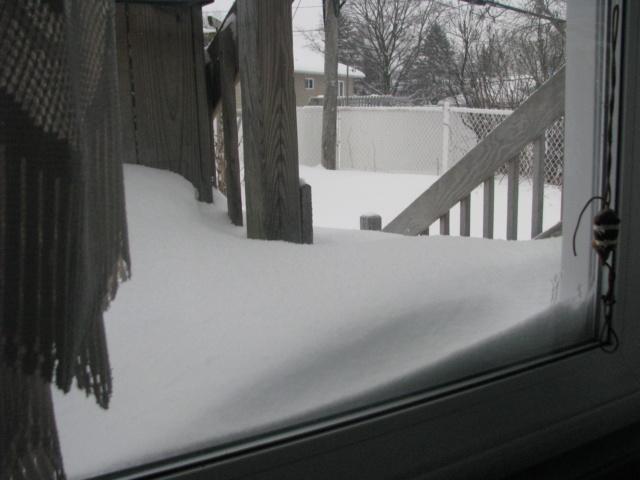 Tempête hivernale Img_4311