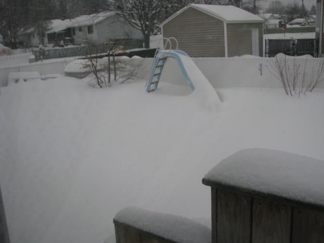 Tempête hivernale Img_4312