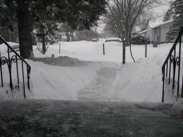 Tempête hivernale Img_4313