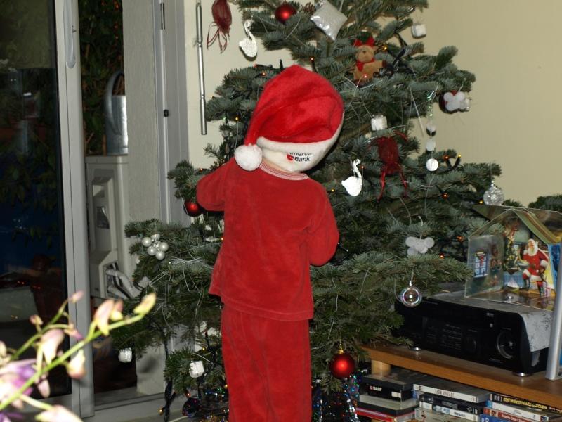Discussions sur le thème et photos hors concours du mois de décembre 2009 Pc232110