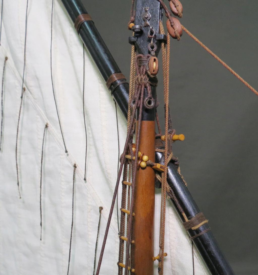 Parancelle canonnière  - Page 25 Img_2455