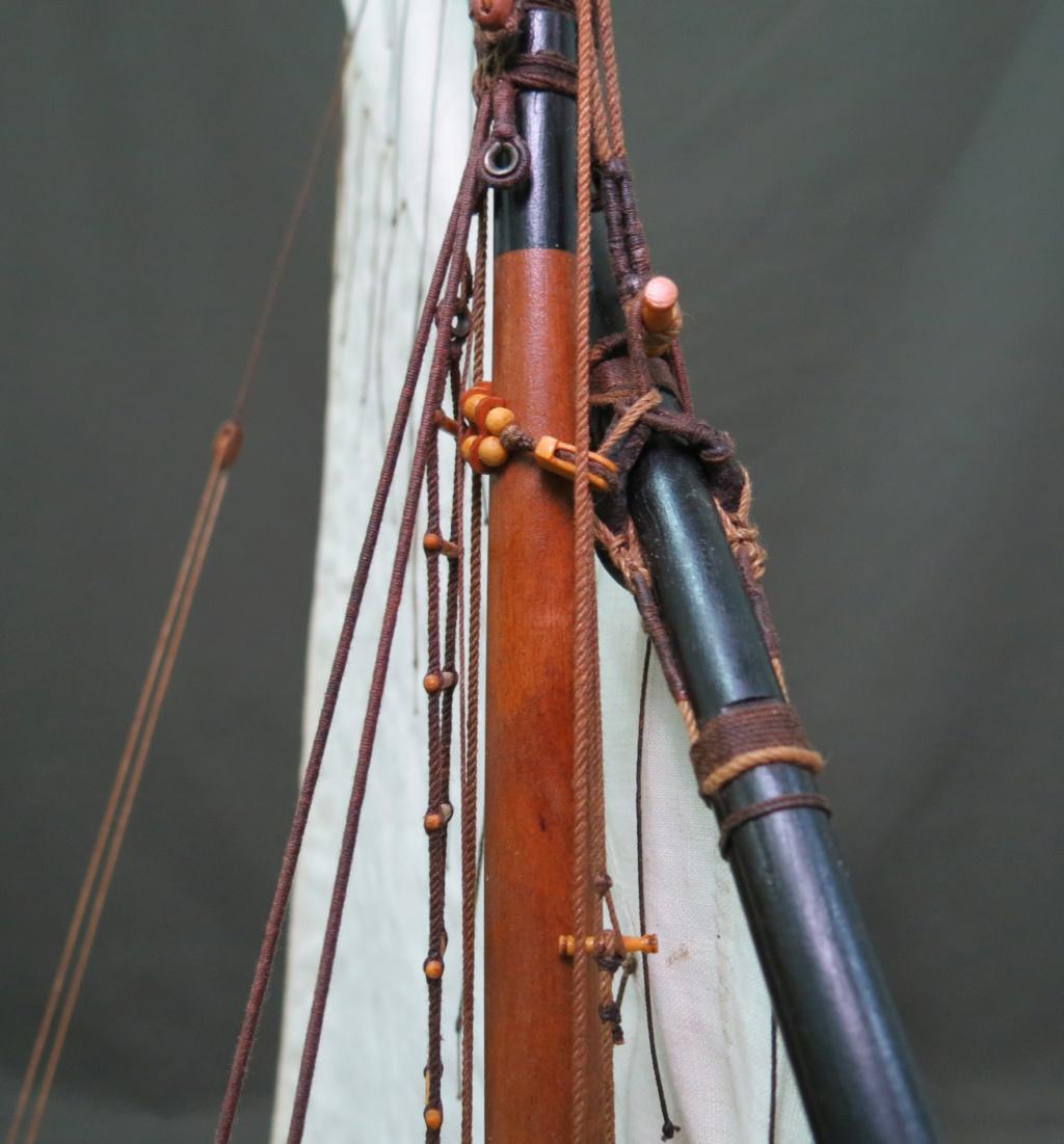 Parancelle canonnière  - Page 25 Img_2457
