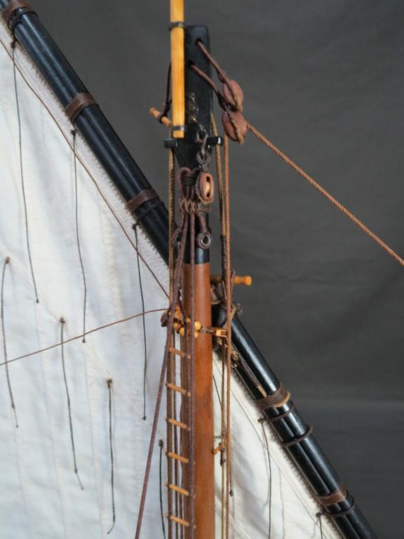Parancelle canonnière  - Page 26 Img_2619