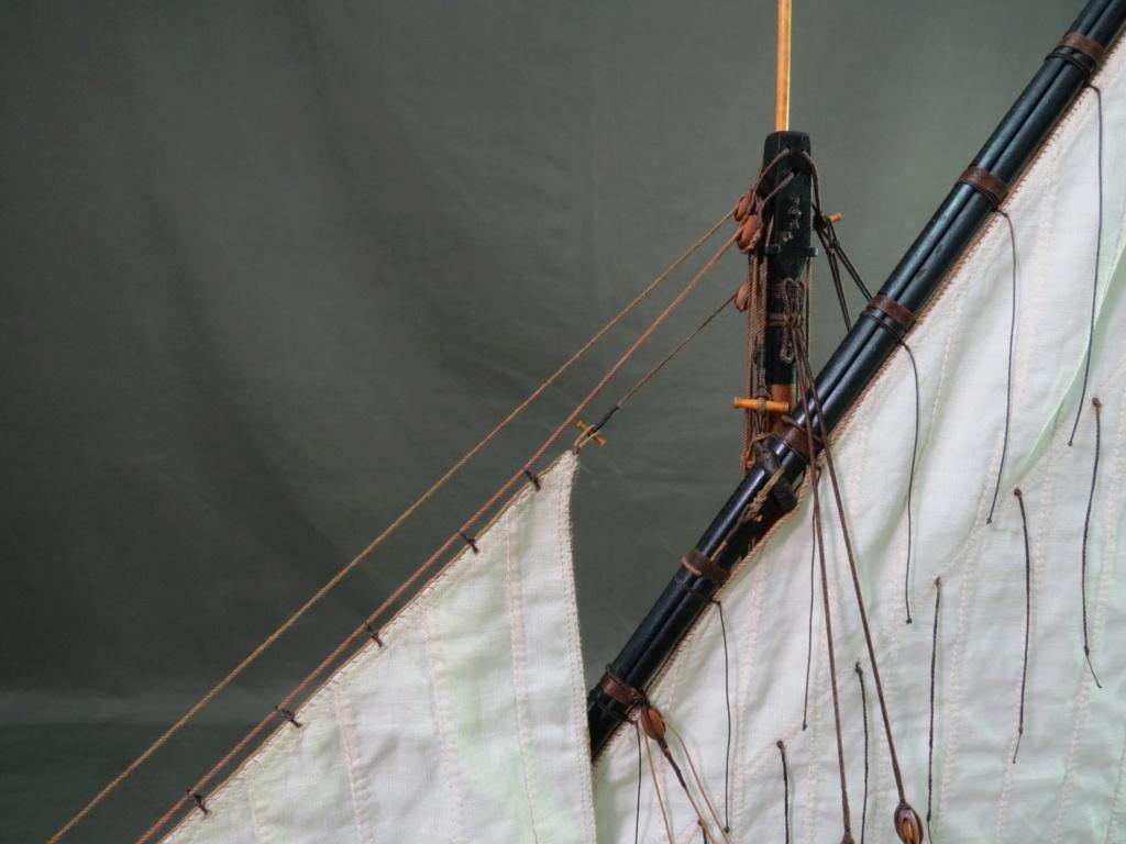 Parancelle canonnière  - Page 28 Img_2936