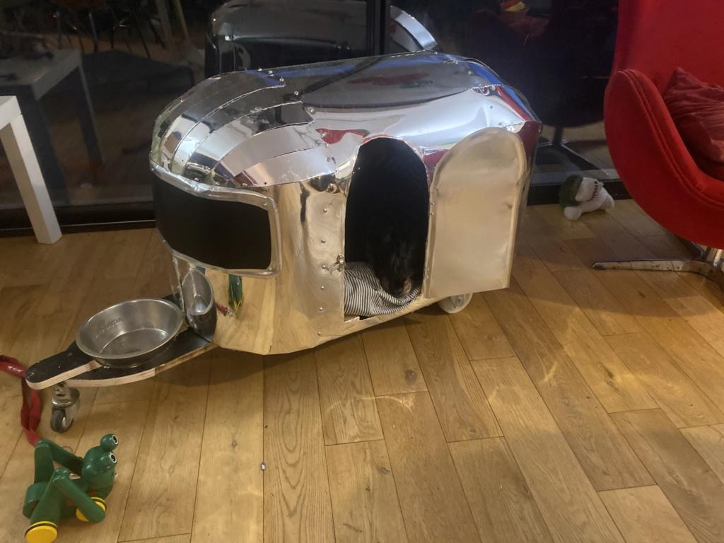 Restauration de la 201 Cabriolet de Tibo - Page 13 E27fd610