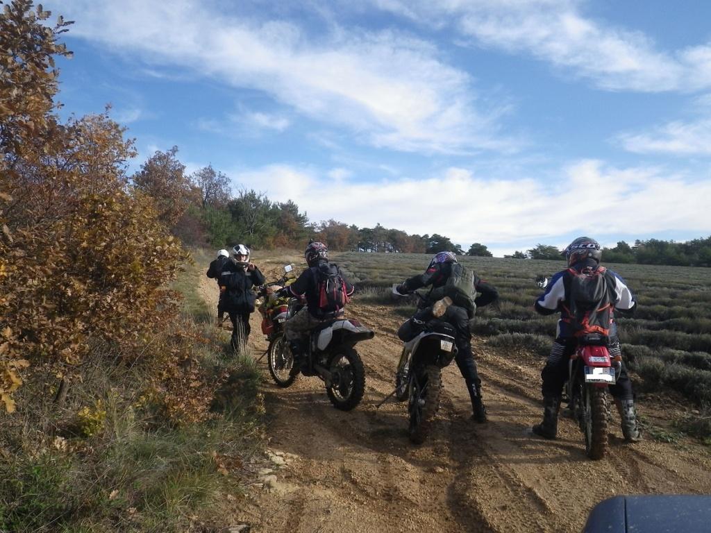 Rando trail  Imgp0019