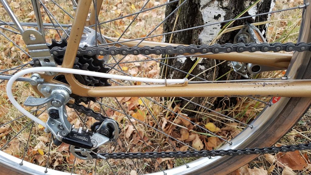 Hirondelle Manufrance cyclotourisme 20181029