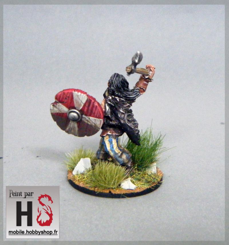 [Galerie de Greg] De quoi jouer le livre des batailles Dscf9215