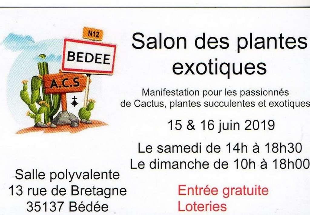 Bédée salon de plantes exotiques (35) Img04412