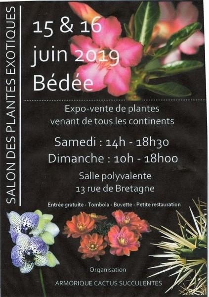 Bédée salon de plantes exotiques (35) Img07211