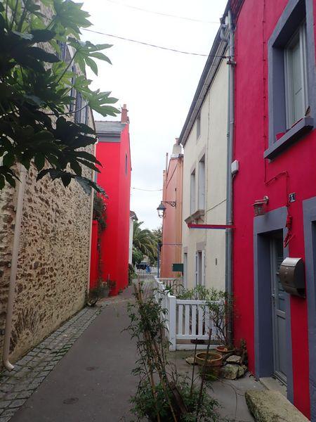 Village jardin exotique de Trentemoult (44) P4282115