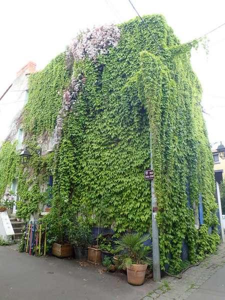 Village jardin exotique de Trentemoult (44) P4282210
