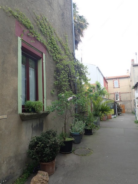 Village jardin exotique de Trentemoult (44) P4282212