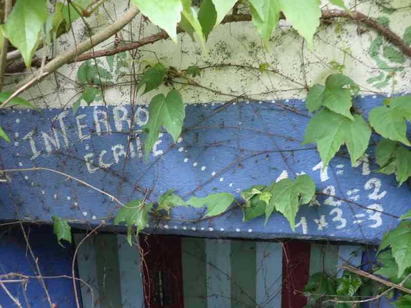 Village jardin exotique de Trentemoult (44) P4282214