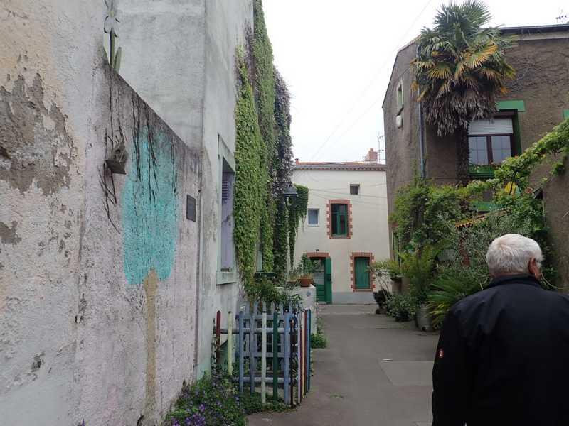 Village jardin exotique de Trentemoult (44) P4282222