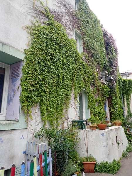 Village jardin exotique de Trentemoult (44) P4282223