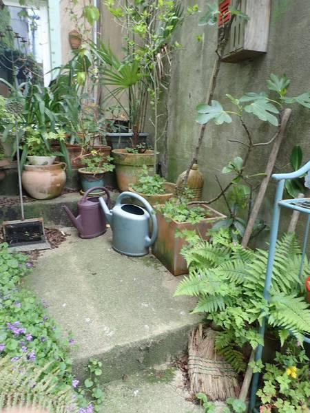 Village jardin exotique de Trentemoult (44) P4282224