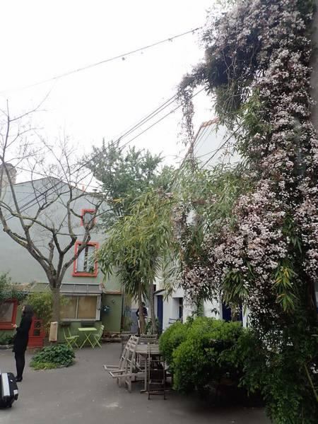 Village jardin exotique de Trentemoult (44) P4282230