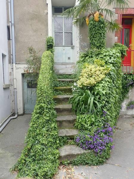 Village jardin exotique de Trentemoult (44) P4282234
