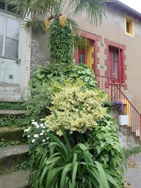 Village jardin exotique de Trentemoult (44) P4282235