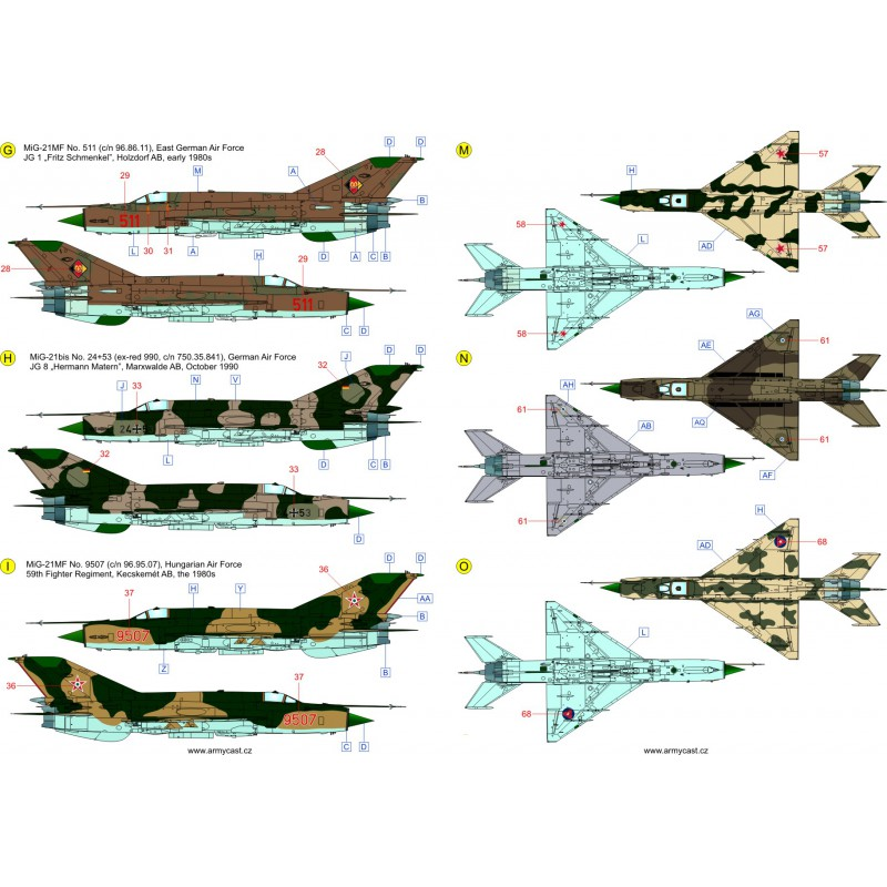 The Fishbeds Mig-21 in the world 387-th10