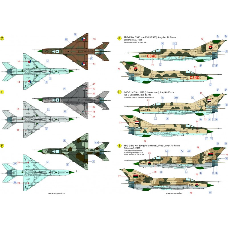 The Fishbeds Mig-21 in the world 389-th10