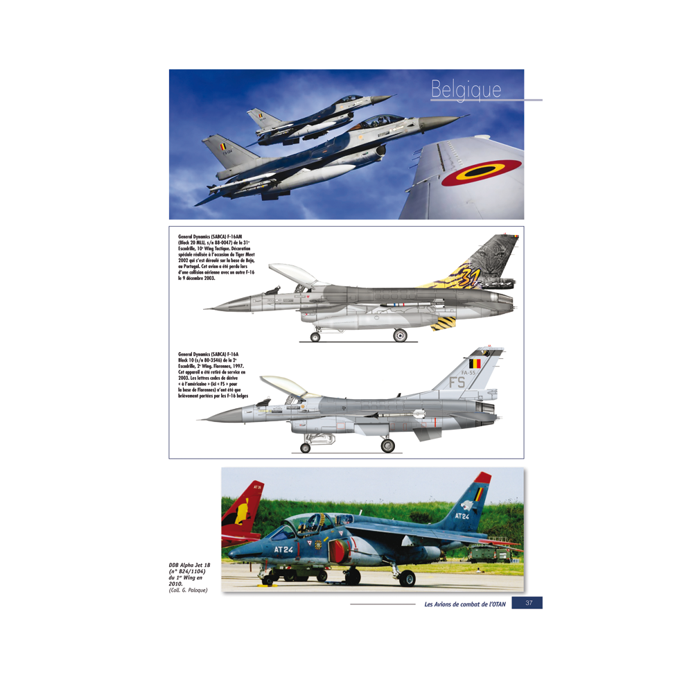 Avions de combat de l'OTAN 1ère partie - HS n°5 Avions de Combat - Heimdal Avions13