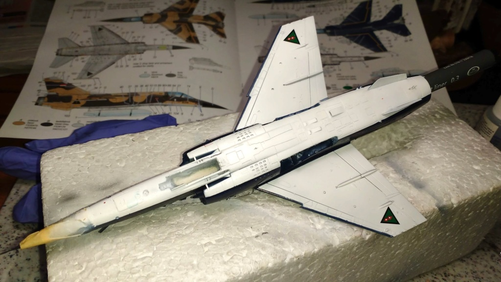 Mirage F1EQ Irak [Special Hobby 1/72] - Page 3 Img_2062