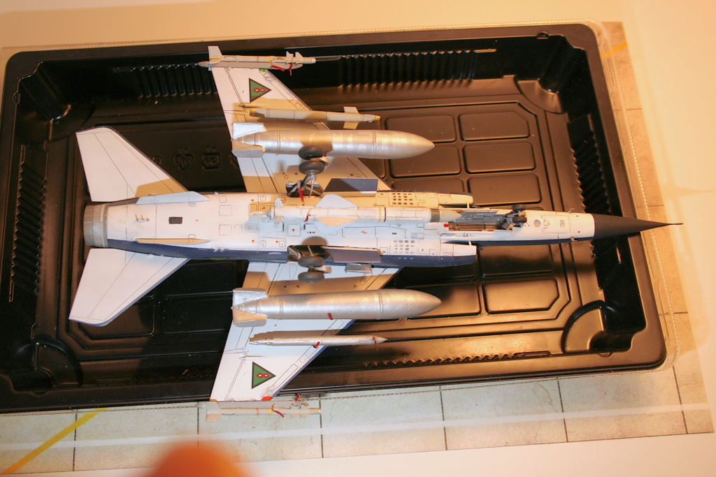 Mirage F1EQ Irak [Special Hobby 1/72] - Page 3 Img_7814