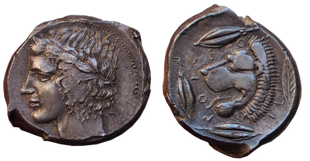 Les monnaies grecques de Brennos - Page 7 Leonti11