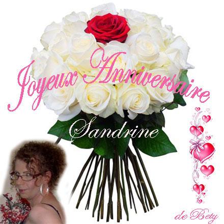 Anniversaire Sandrine Annive14
