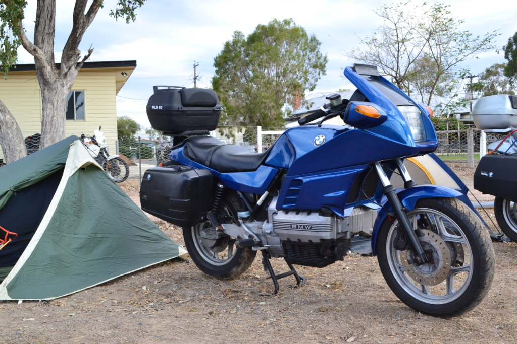 Cane Toad Rally - 2019 - Page 2 Dsc_0015
