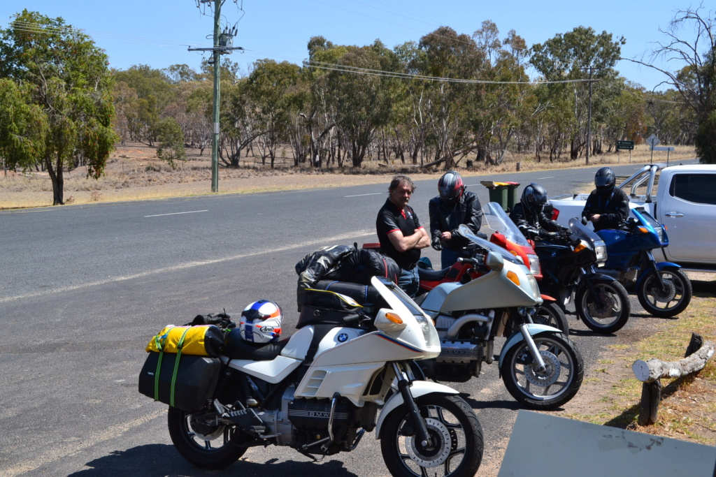 Cane Toad Rally - 2019 - Page 2 Dsc_0020