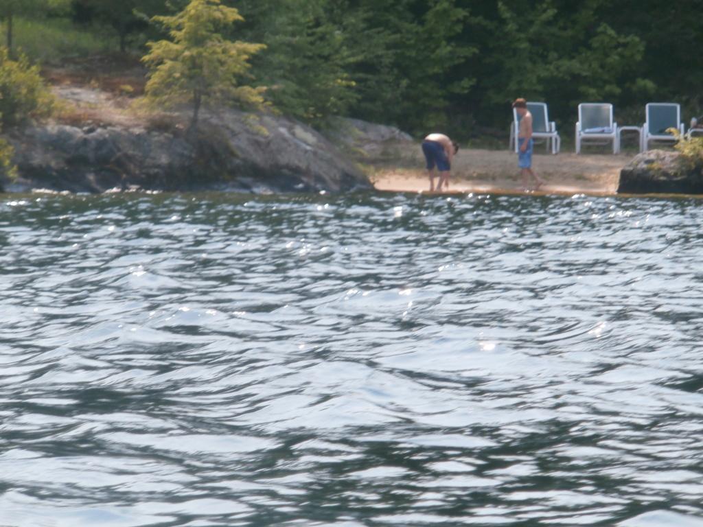 """Visitor"" Invades Quiet Winter Harbor... - Page 6 P7130010"