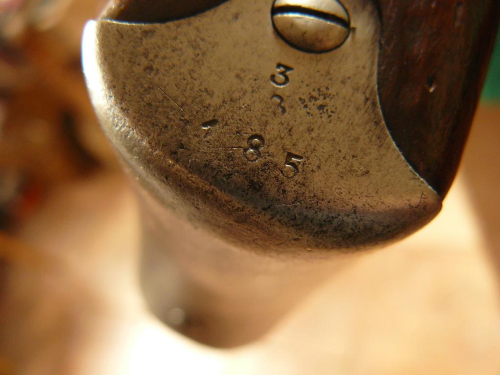 """Schmidt rubin 1889 & 1896/11: Mes premiers """"P'tit Suisses"""" P1080448"""