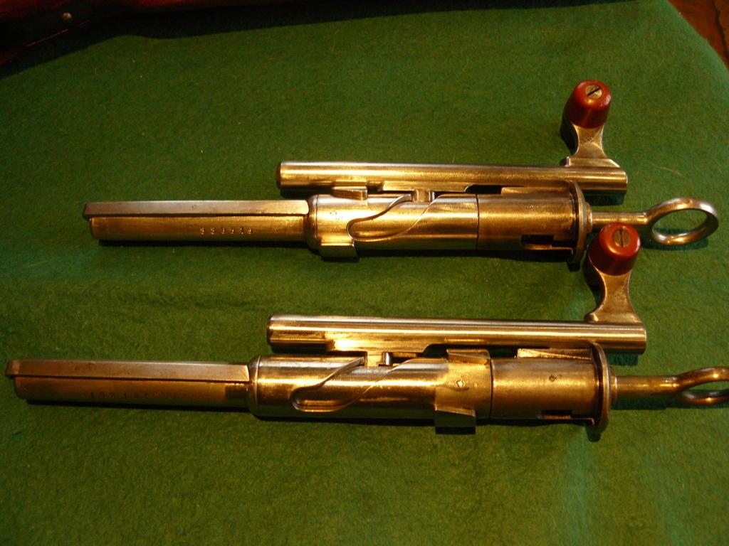 """Schmidt rubin 1889 & 1896/11: Mes premiers """"P'tit Suisses"""" P1080453"""
