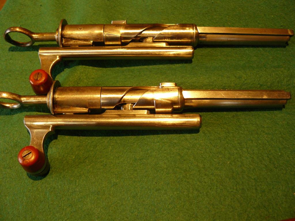 """Schmidt rubin 1889 & 1896/11: Mes premiers """"P'tit Suisses"""" P1080454"""