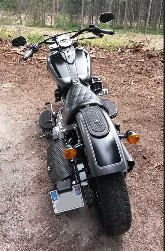 Softail Slim Harley Davidson(VENDUE) Dos10