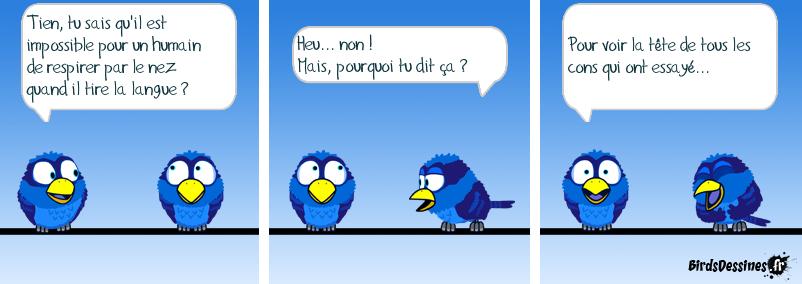 Les Birds Dessinés - Page 4 Tirer_10