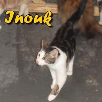 Connexion Inouk110