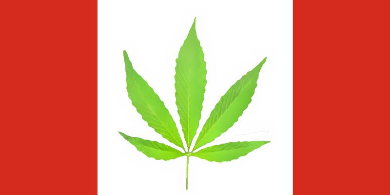 Légalisation du cannabis - Page 6 Drapea10